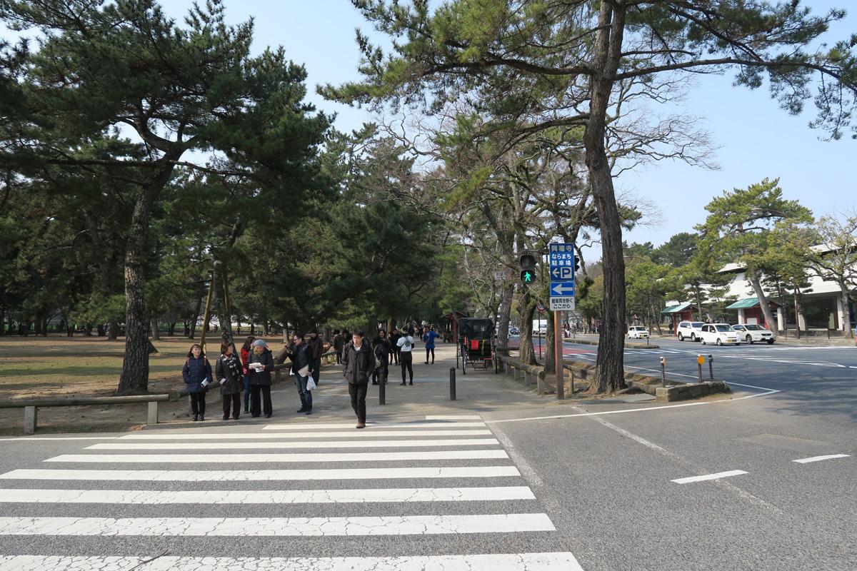 ランチタイムで奈良駅方面にGO!