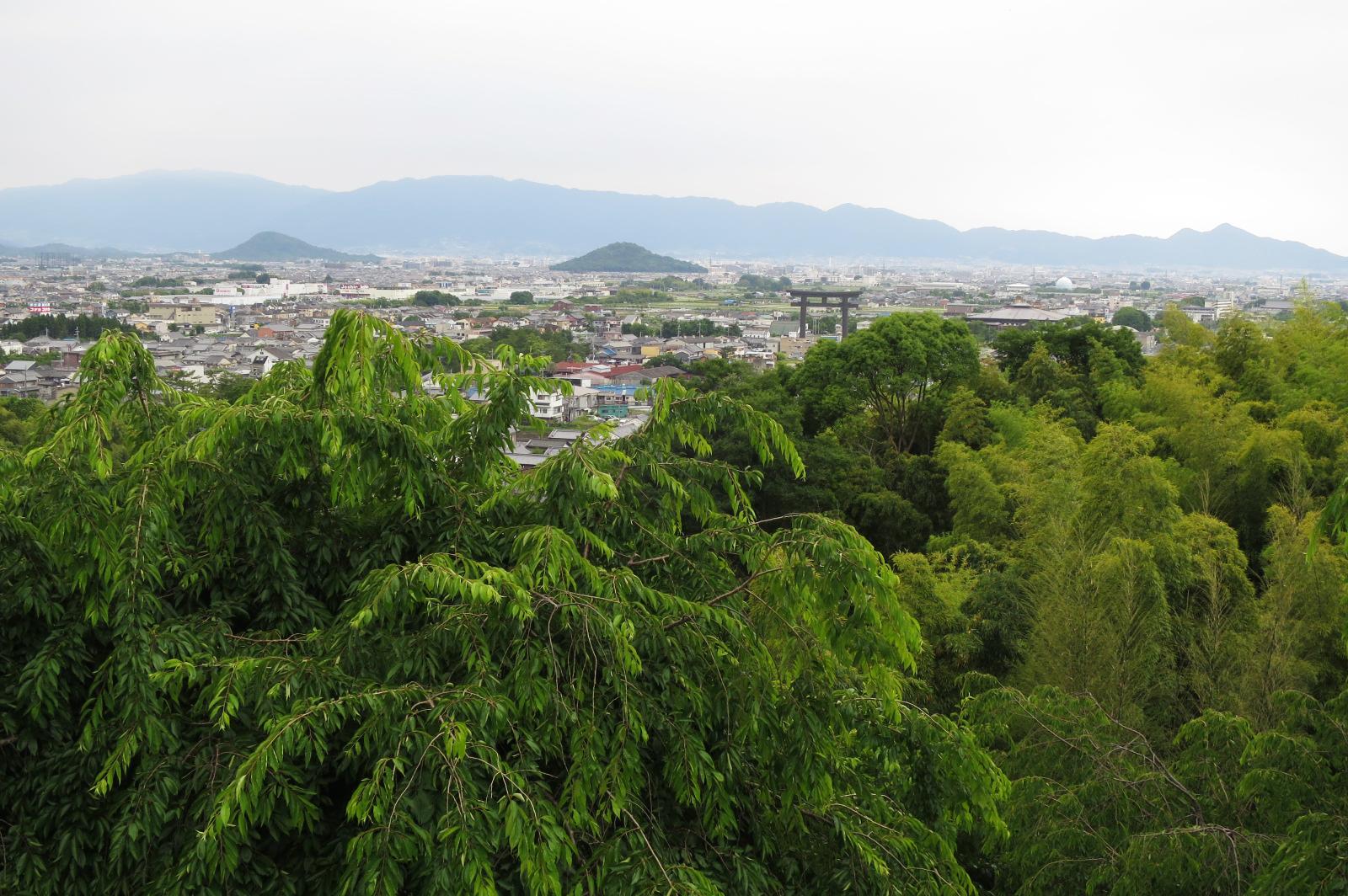 展望台・大美和の杜からの眺望。大鳥居、二上山、大和三山の耳成山、畝傍山、香久山が望めます。