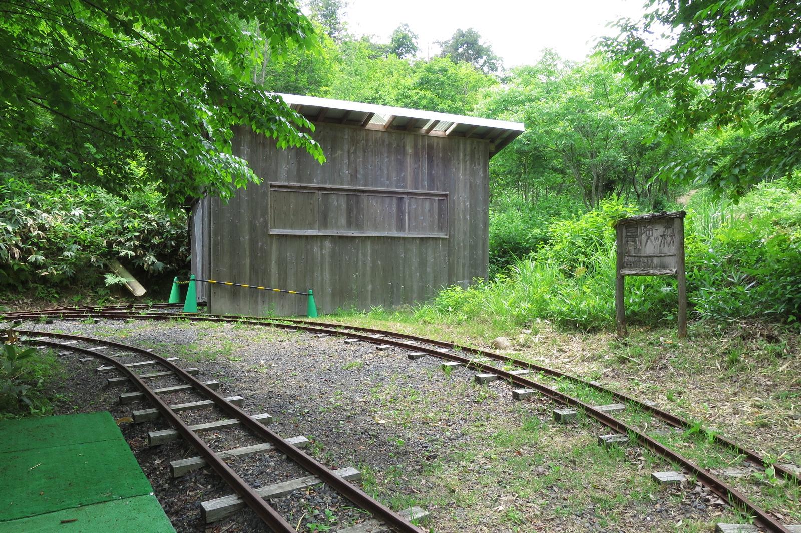 ぼうけんの森にある廃線。細い線路なので、線路上を歩いて行くのは意外と難しい。。。挑戦してみて!
