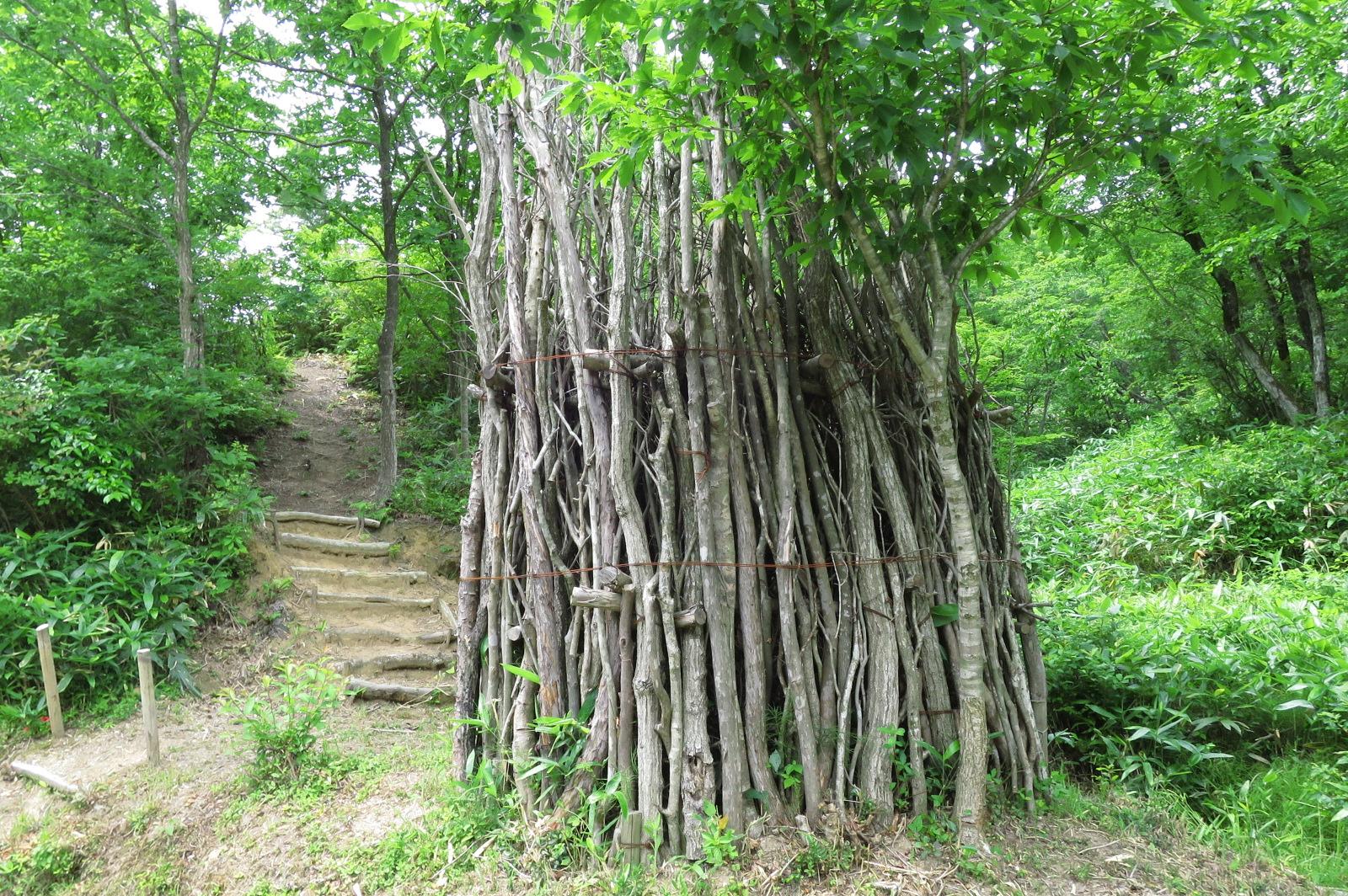 命の塔。山から刈ってきた残り木を捨てずに、立てておくことで、沢山の生き物が住めるようになります