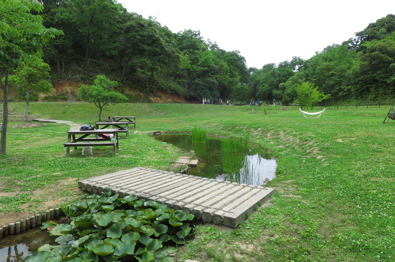 子供も観察しやすい湿地帯。陽射しが強ければ、テーブルに日傘を差してくれます。ハンモックもあり!