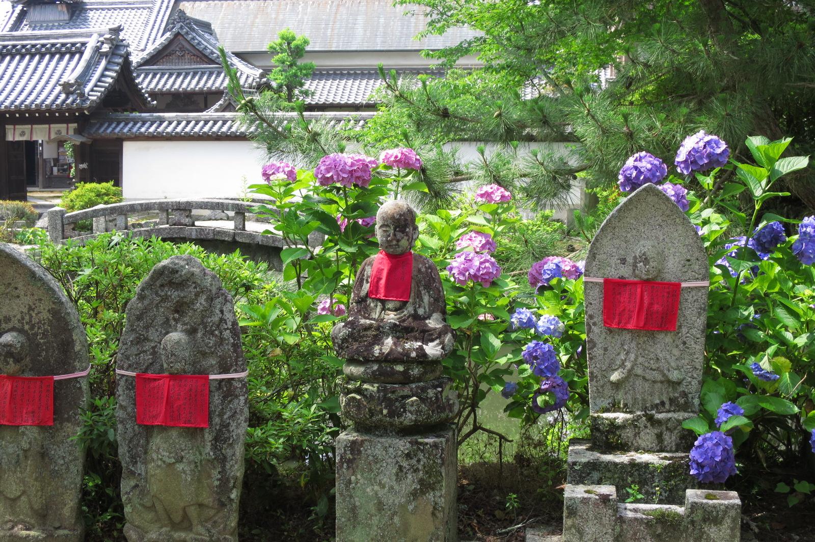 矢田寺はお地蔵さんのお寺としても知られています。