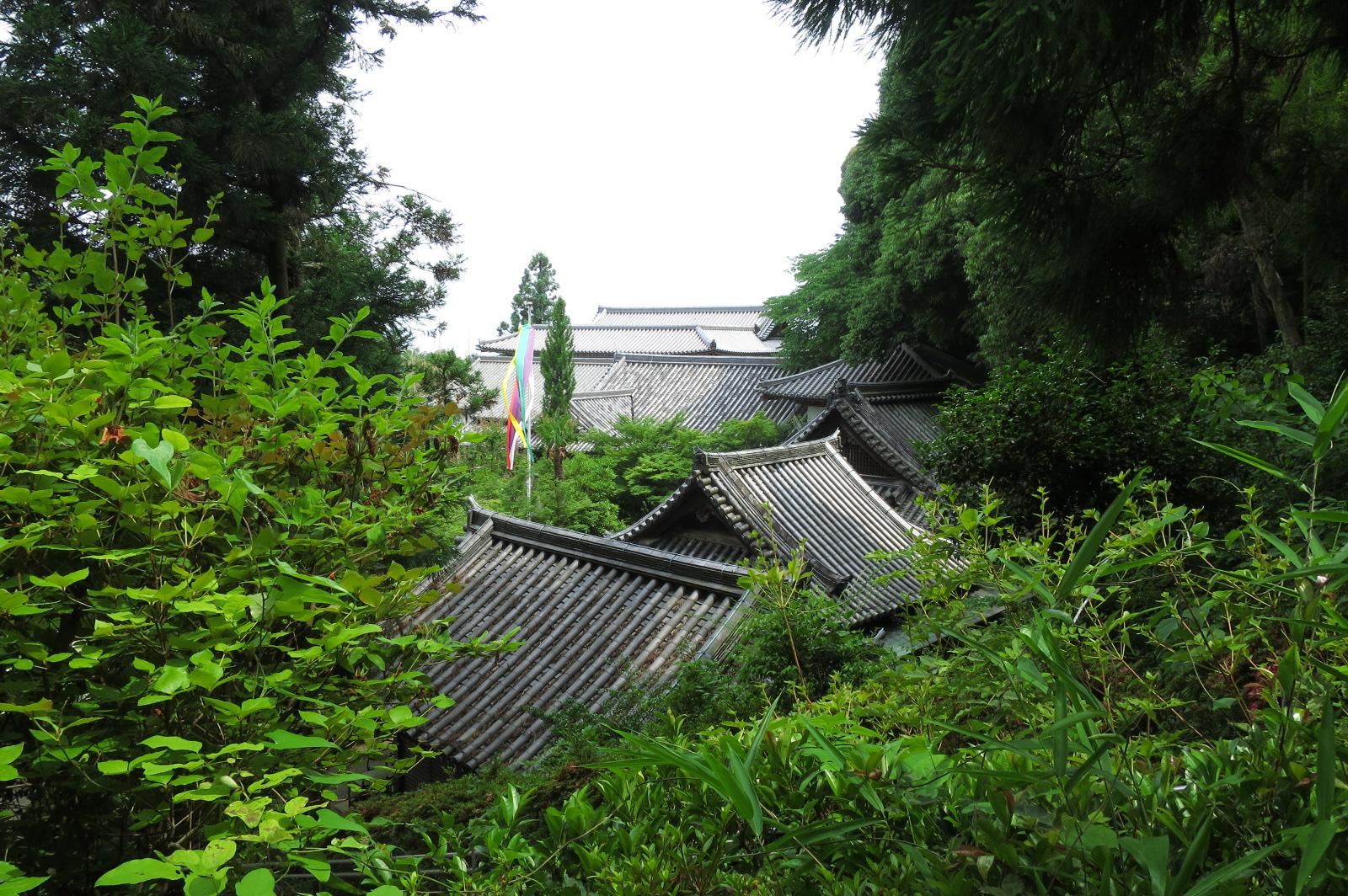 階段上から眺めた阿弥陀堂や七福神堂などの屋根も美しいですね。