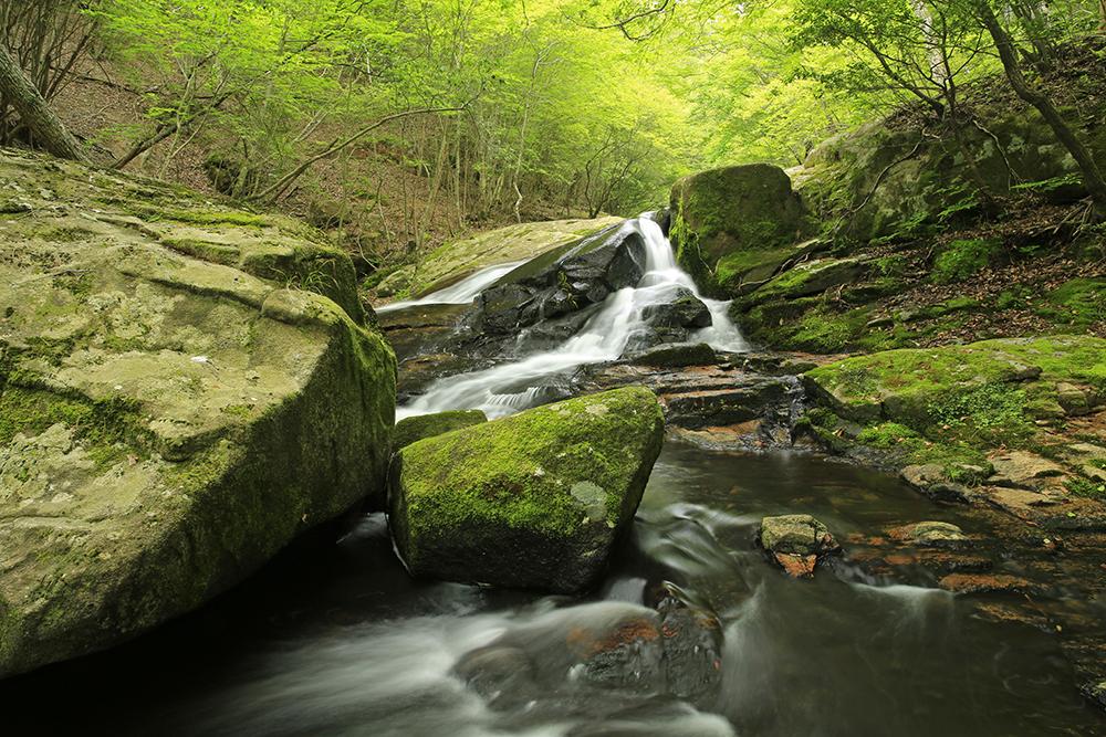 新緑がきれいでした。川遊びもできますが、岩の上などは滑りやすくなっていますので、注意してくださいね。