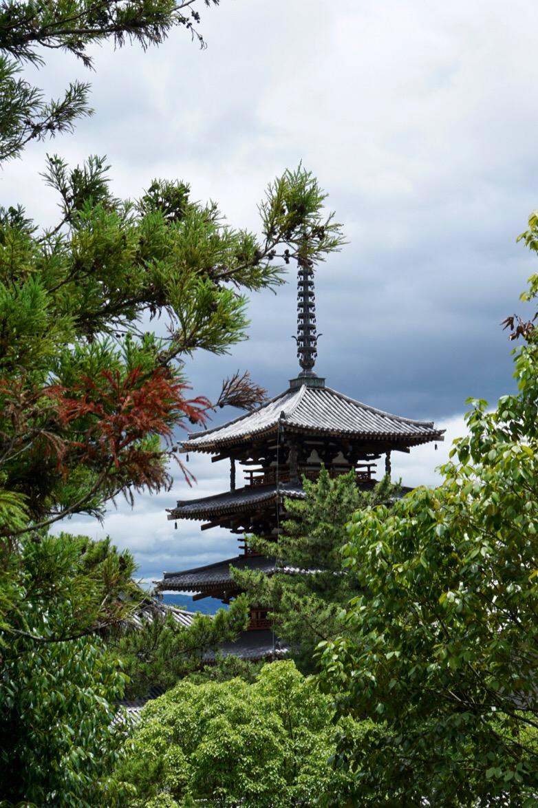 ここから見る五重塔も絶景です。
