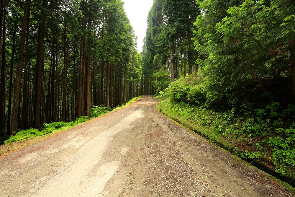 デコボコ道です。山奥ですが、ロードバイク(自転車)の方も多いので、注意が必要です。