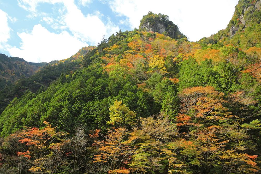 特徴のある岩と紅葉。見ごたえあります!