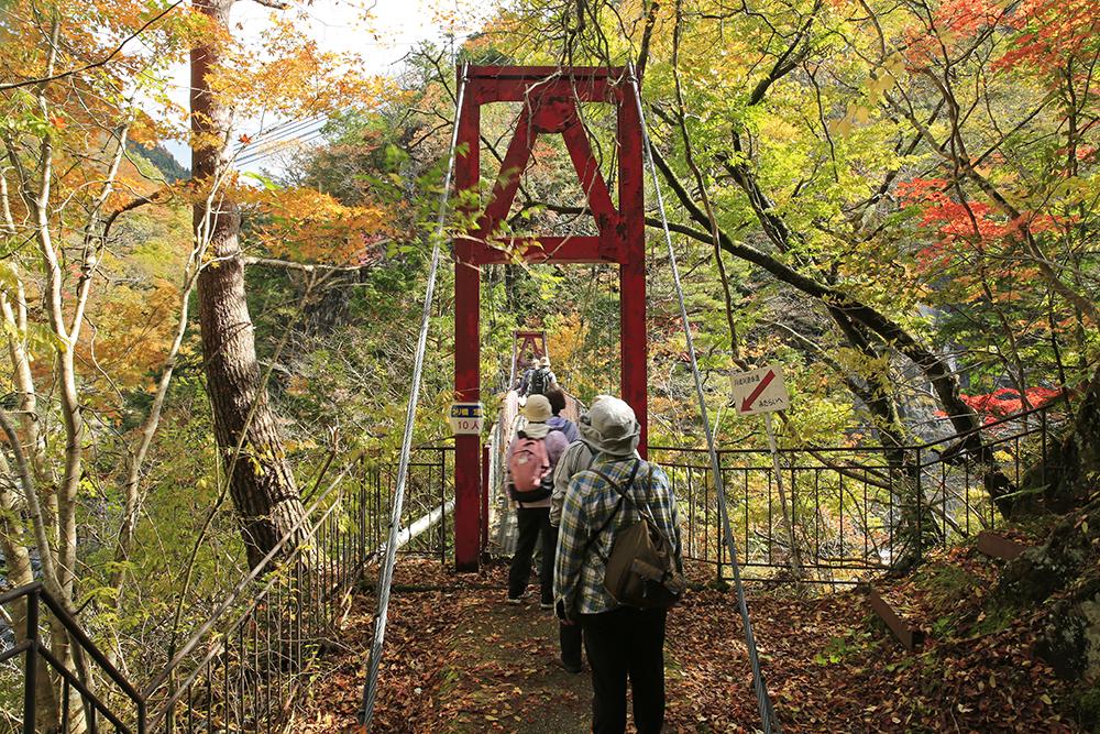 戻る途中の橋ですが、川合方面からの訪問者が次から次と。なかなか渡ることができませんでした。