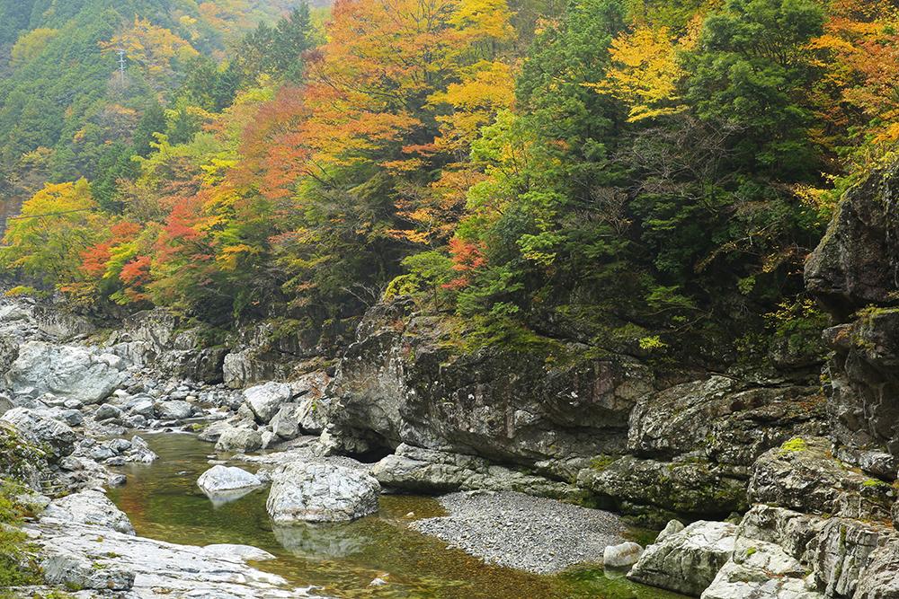 みたらい渓谷まで続く弥山川。澄んだ水の流れがきれいです。