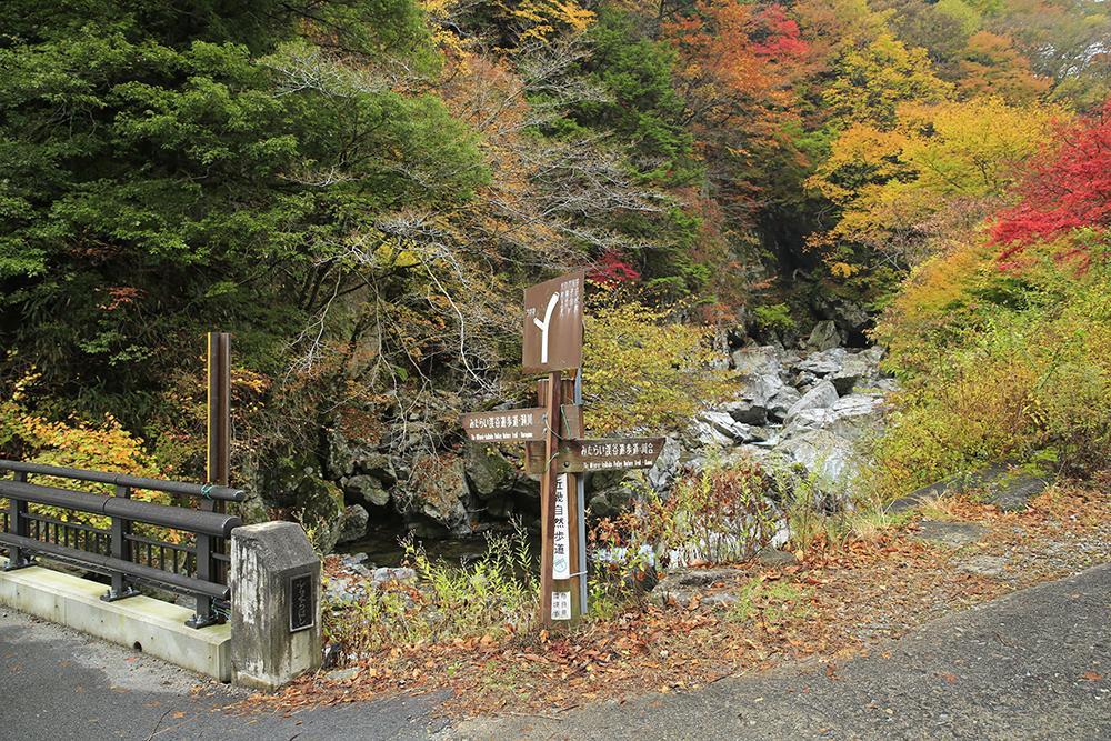 左が洞川方向、右が川合方向。
