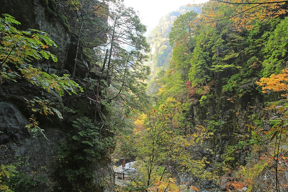 遊歩道はよく整備されていて、滝、川、渓谷などゆっくり堪能できます!