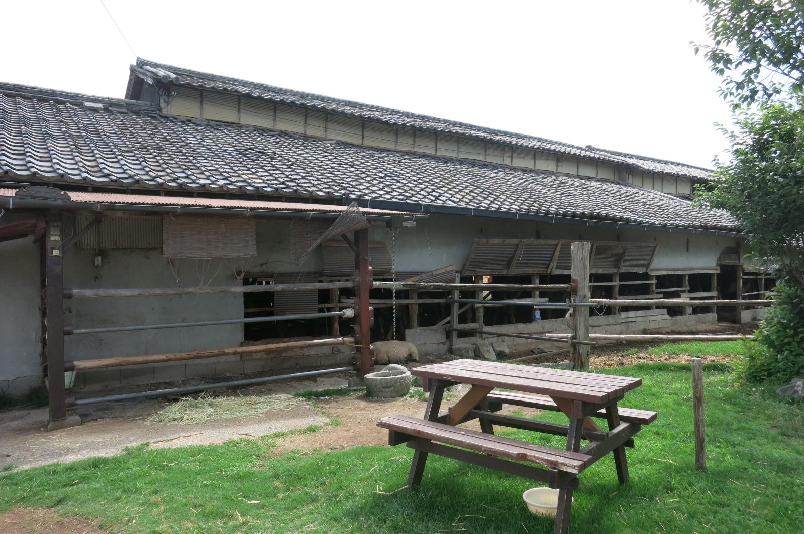 奥には牛舎がありました。