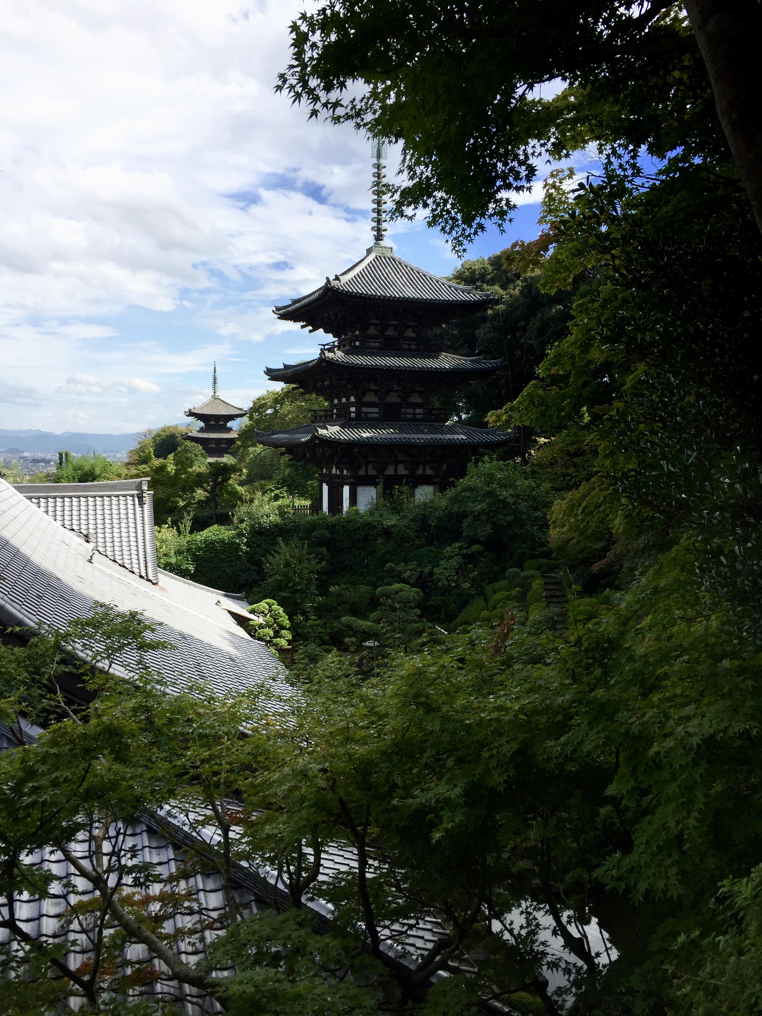 手前が當麻寺西塔。現在修復中です。(2016年秋撮影)奥は東塔です。