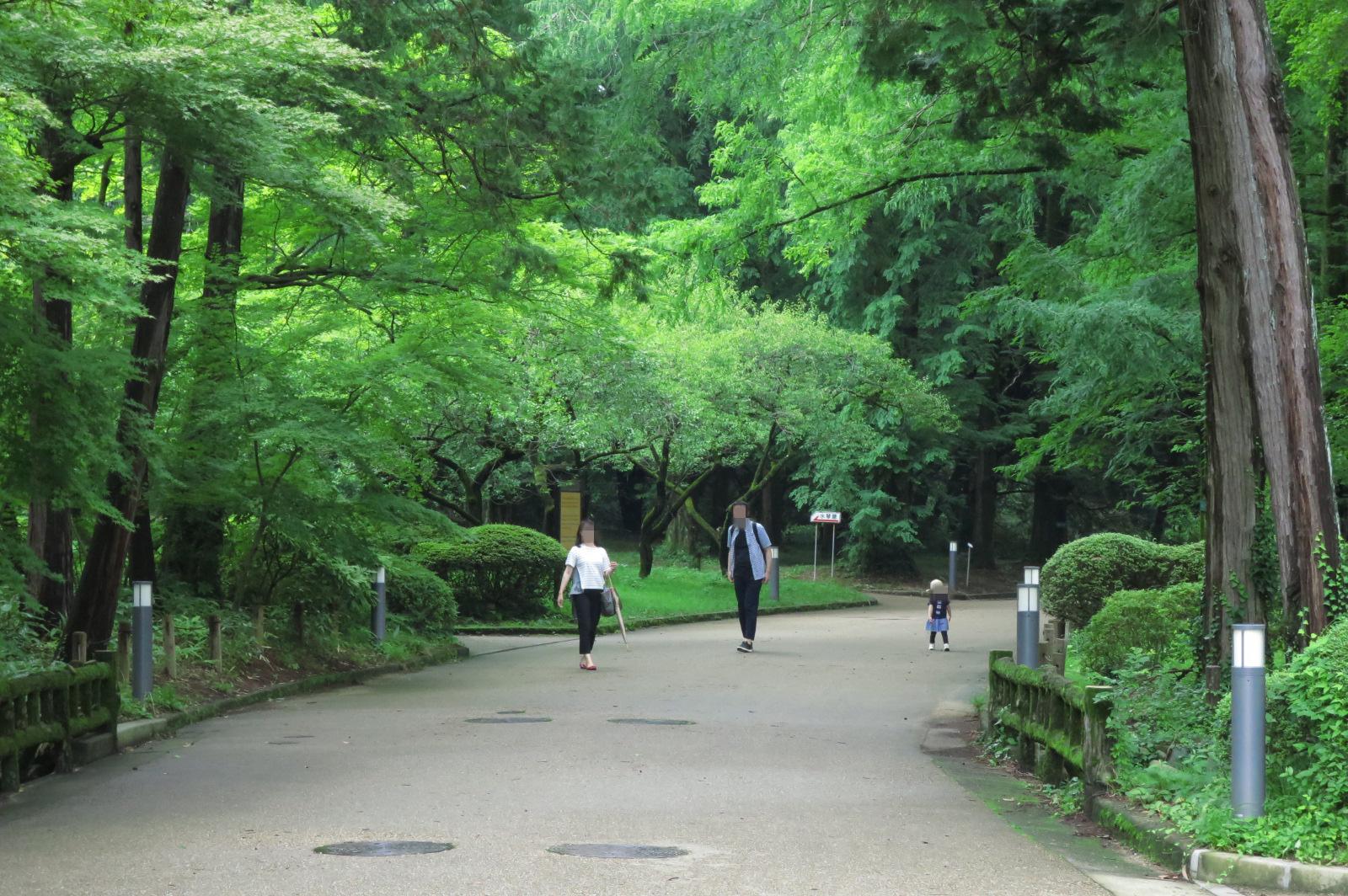 ヨチヨチ歩きのお子様も安心の植物園。池や小川などでは注意してあげてくださいね。
