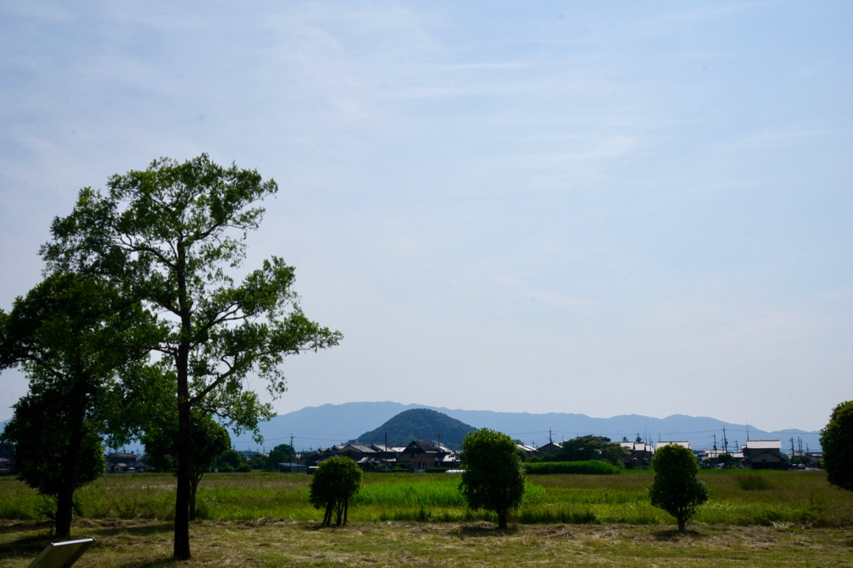 大和三山がきれいに見えます。