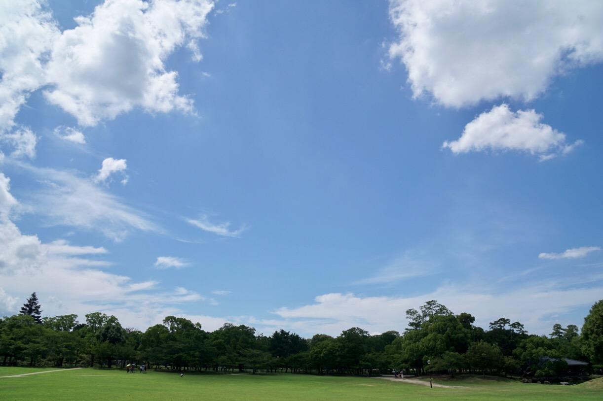 奈良公園を歩いて若草山へ。芝がとても綺麗です。