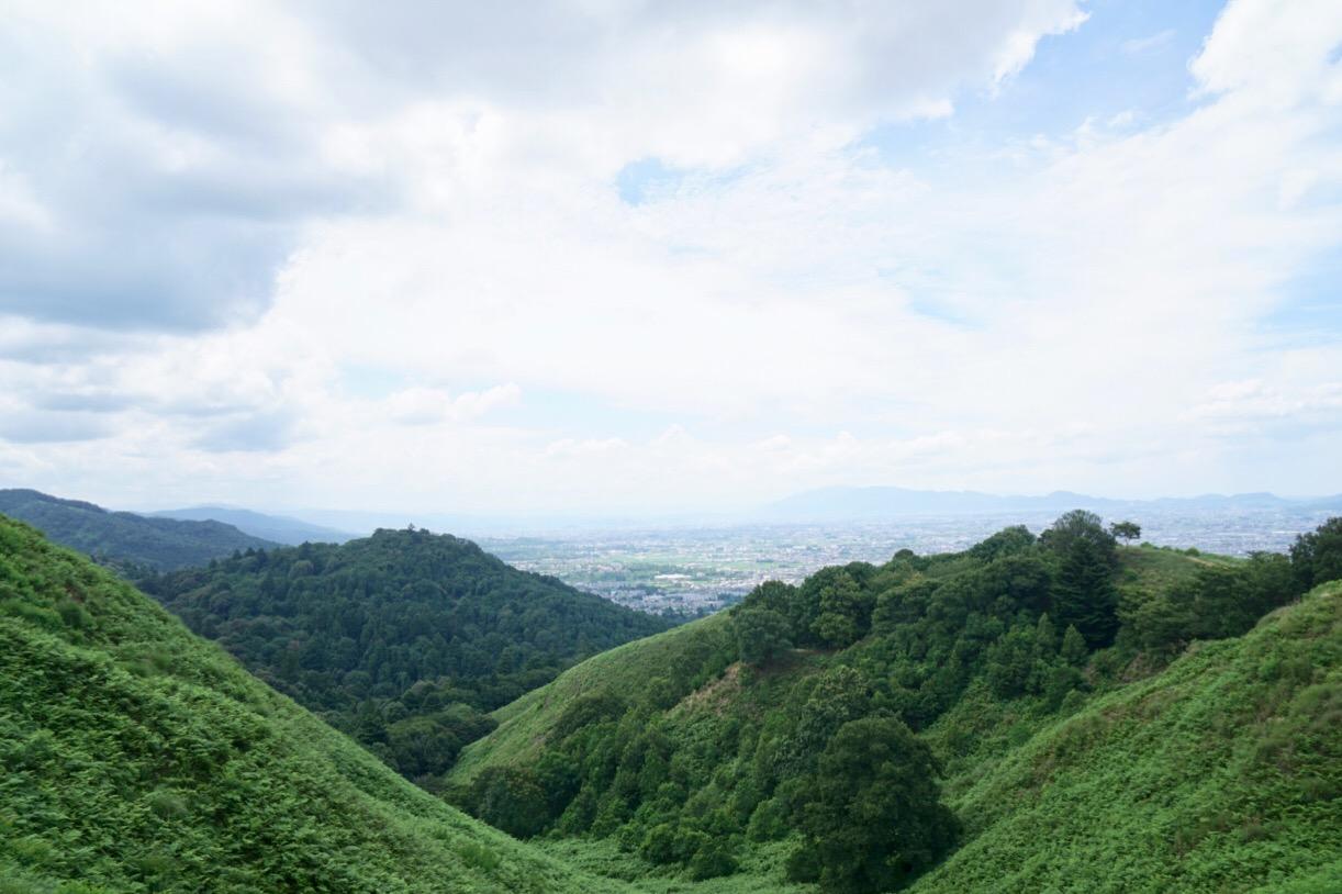 南に広がるのが春日山原始林です。