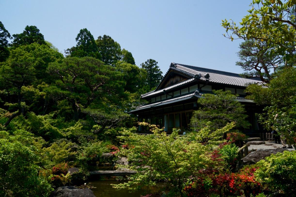池の庭。江戸時代からの自然の地形を利用して住宅と一体となるように作られています。