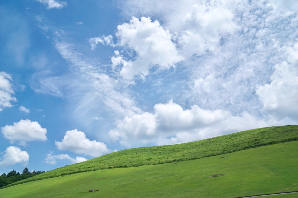 ぶらぶら若草山へ。とても綺麗です。