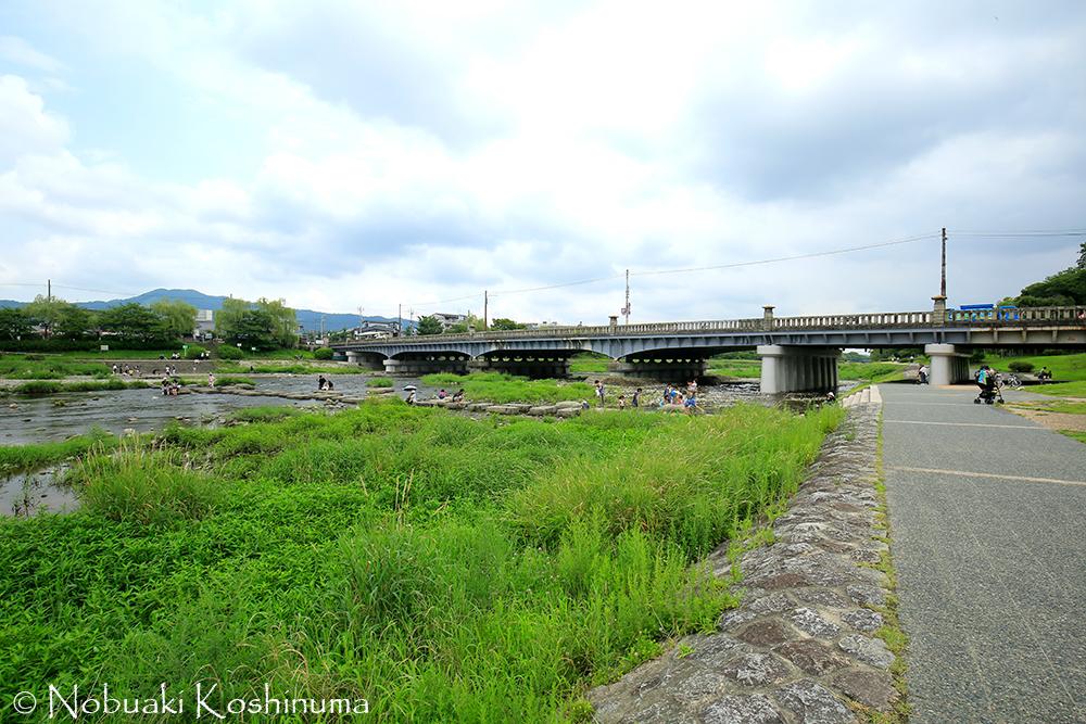 賀茂大橋の下では、たくさんの人が川遊びをしてました。