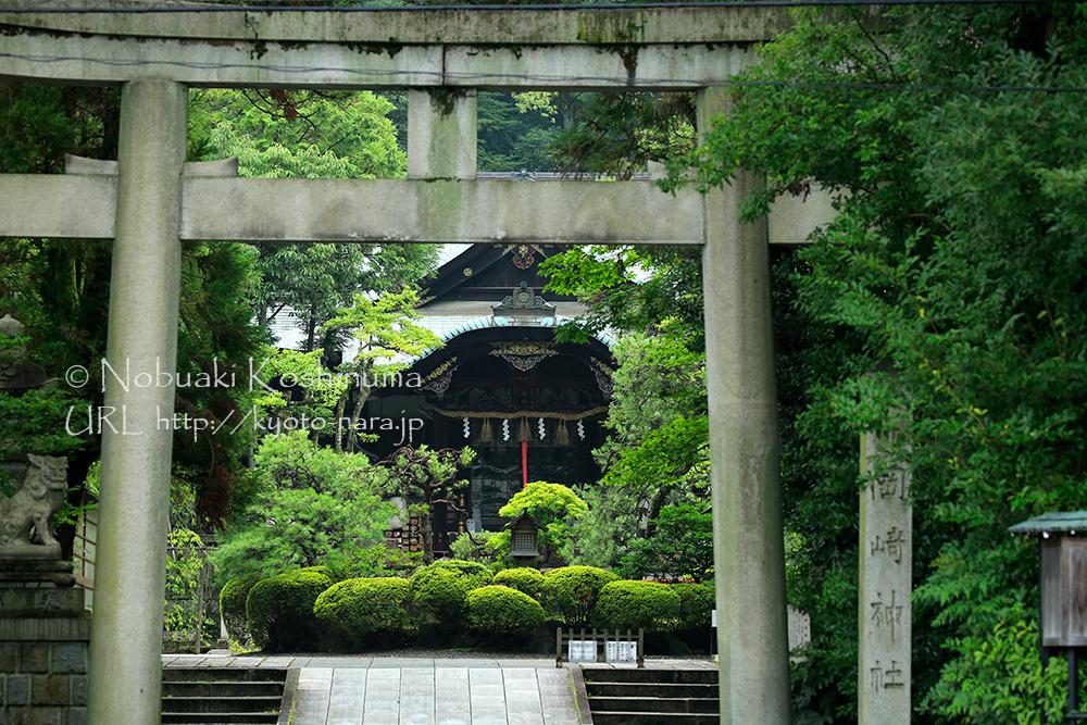 雨上がりの岡崎神社もしっとりとして良い雰囲気でした。