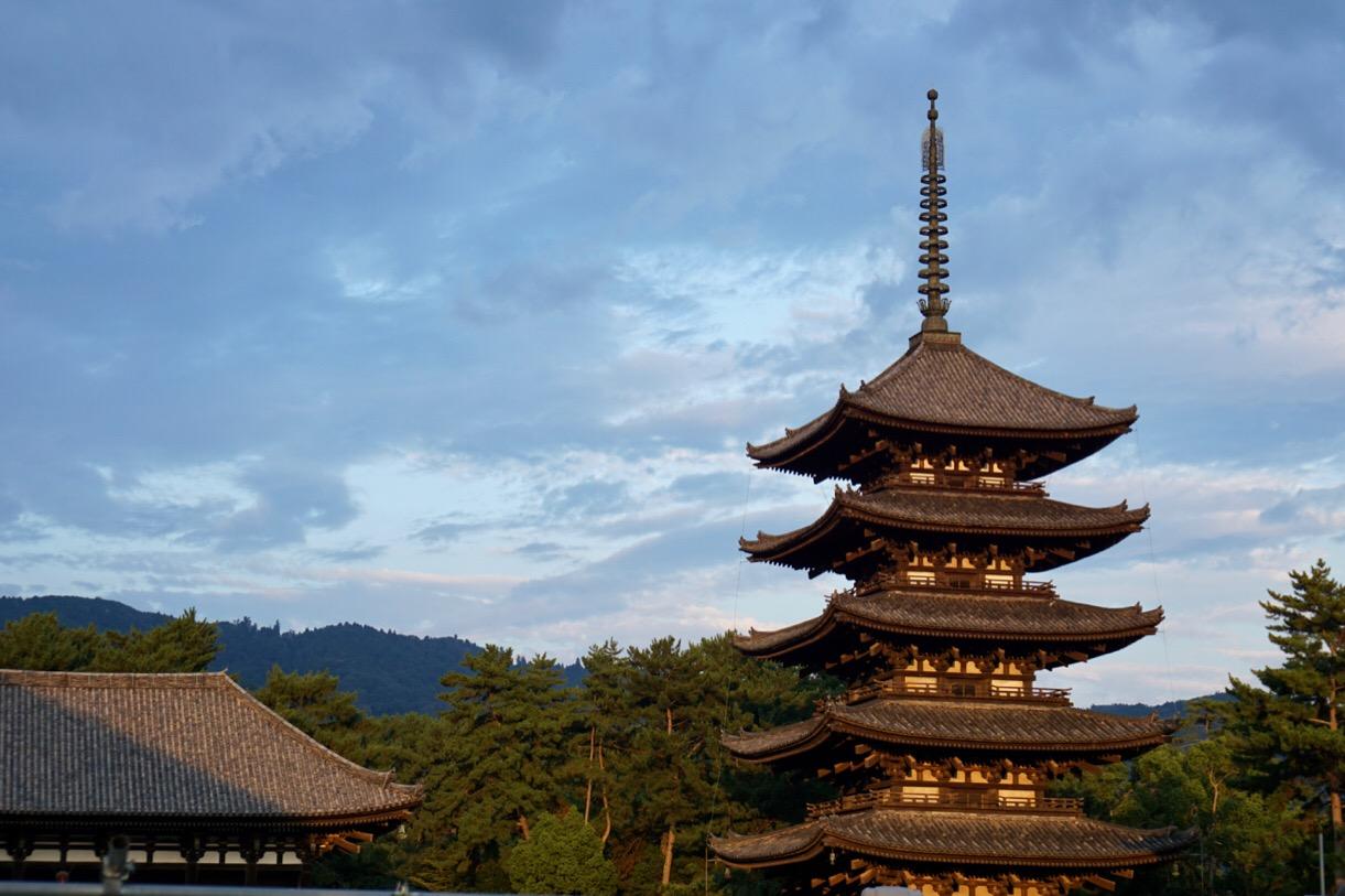 夕暮れの興福寺五重塔もいい感じです。