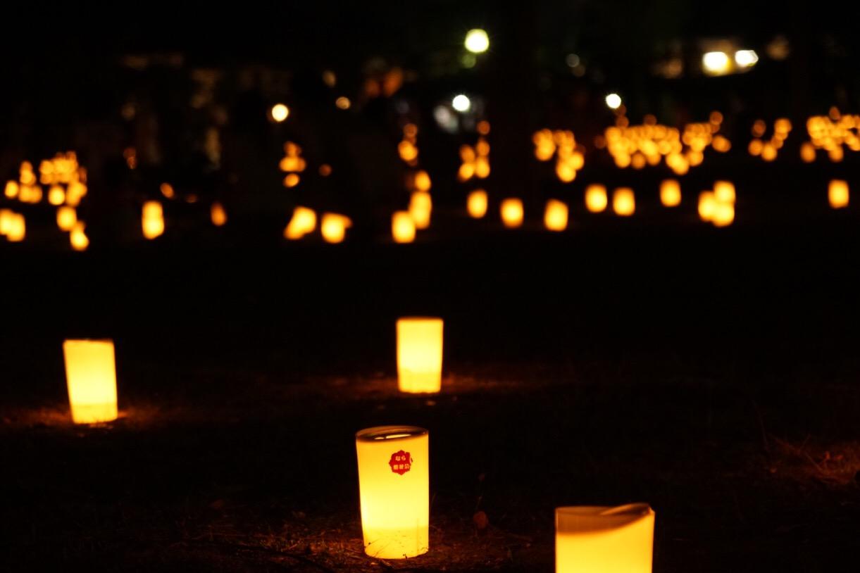 たくさんのろうそくが灯るととても綺麗です。