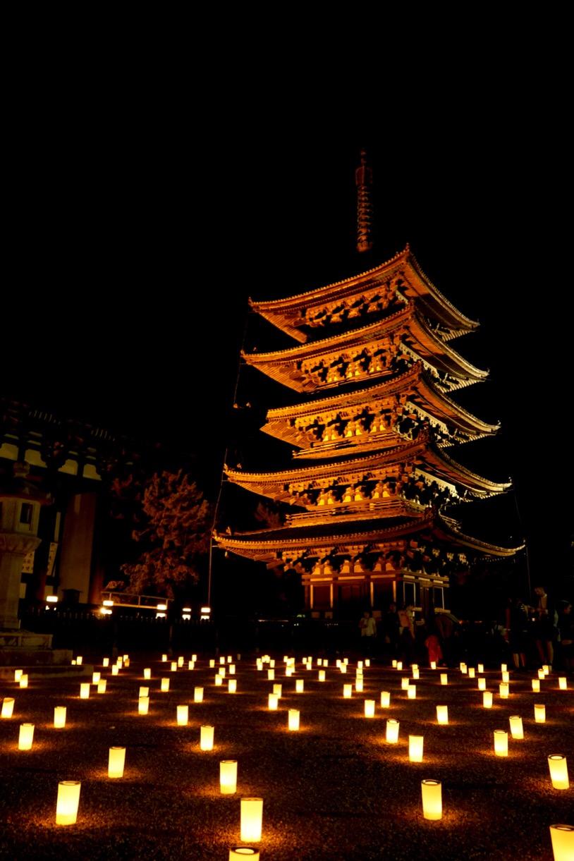 興福寺五重塔。ライトアップされていて幻想的です。