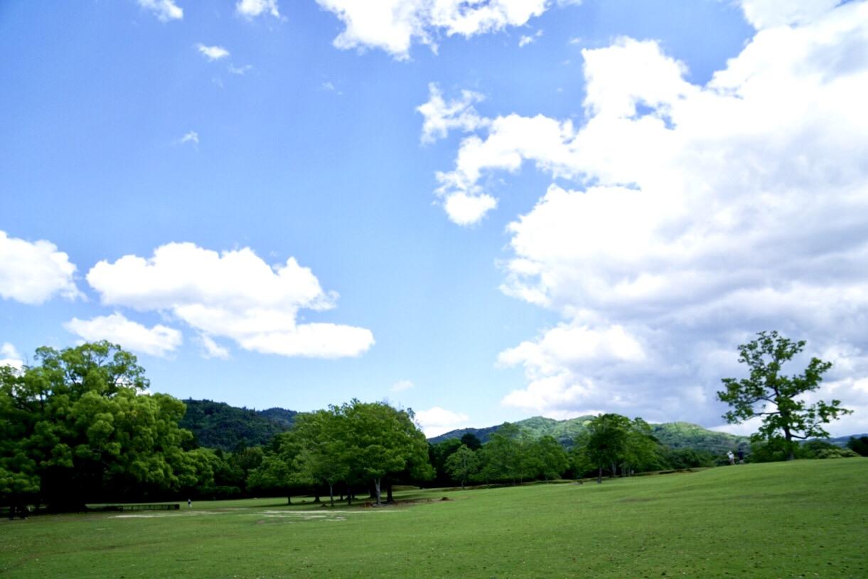 この日は薄曇りでしたが、晴れるととても綺麗です。これは別の日に撮ったものです。