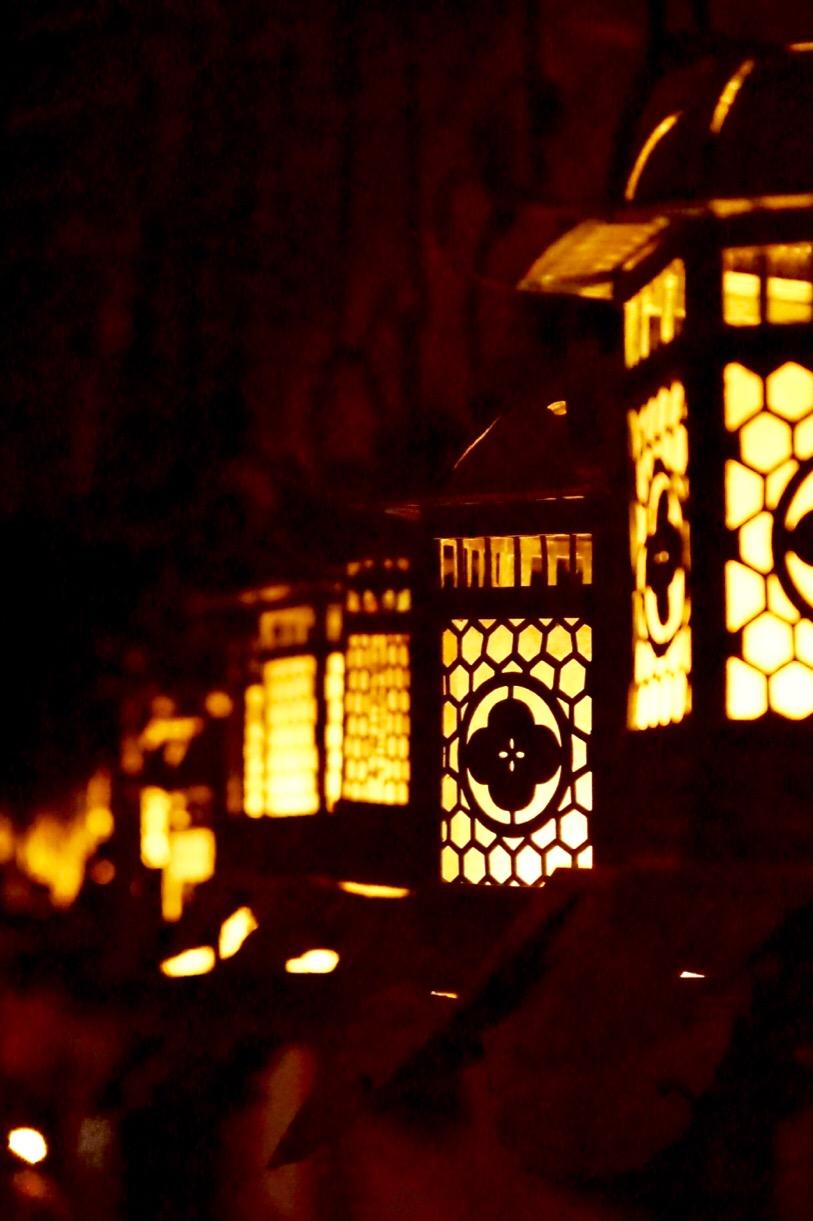 歩いて10分ほどで春日大社へ。燈籠に灯がともり幻想的です。