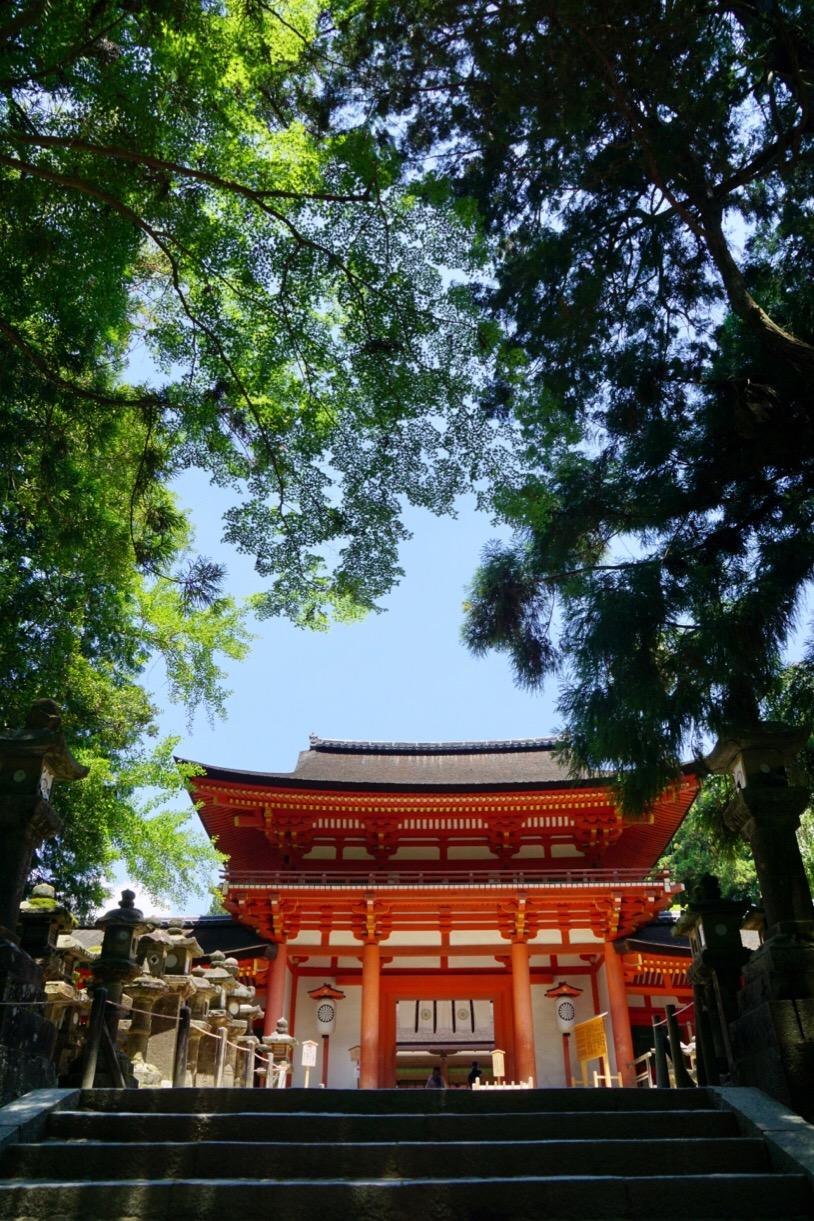 春日大社は緑に囲まれとても美しいです。