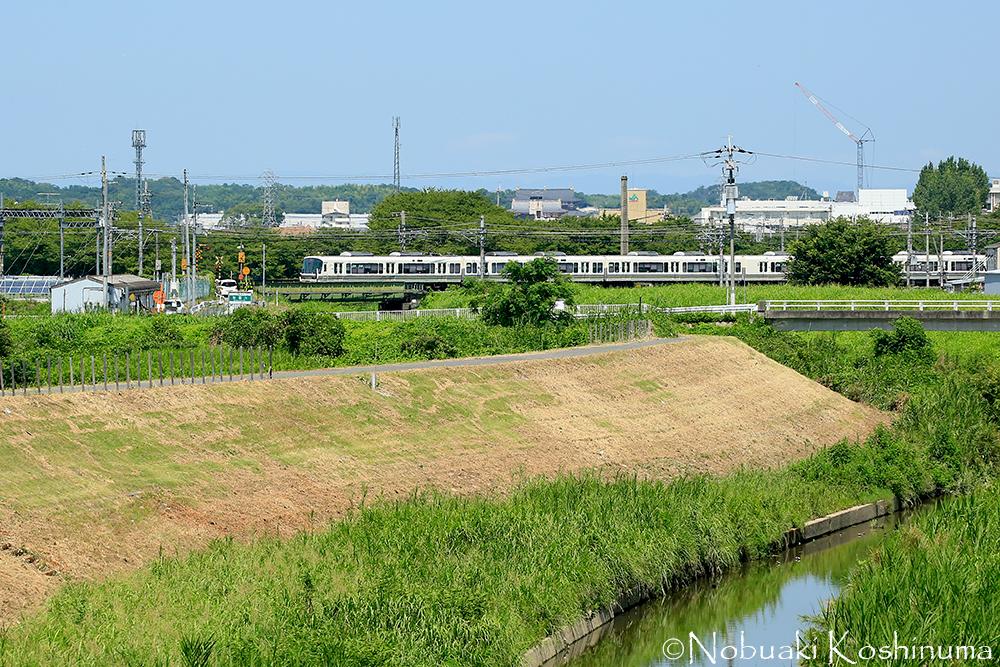 白い電車が見えますが、JR関西本線「郡山駅」からも歩いてこれる距離にあります。平城宮跡も見えます!