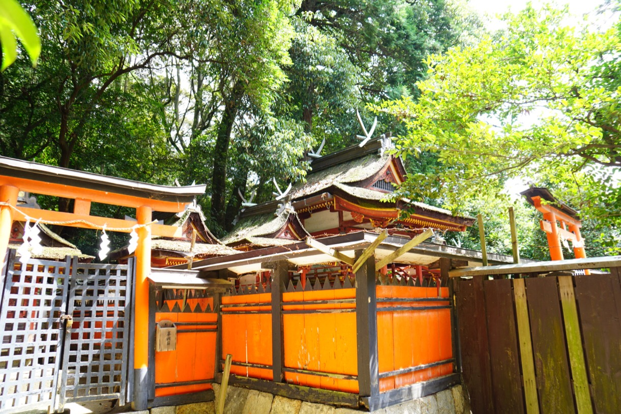 後ろには本殿が。森の中のこじんまりした境内に美しい拝殿と本殿が。