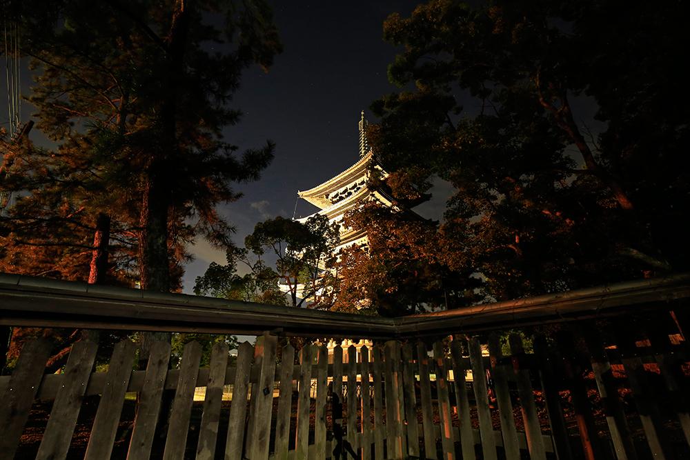 夜の興福寺五重塔。