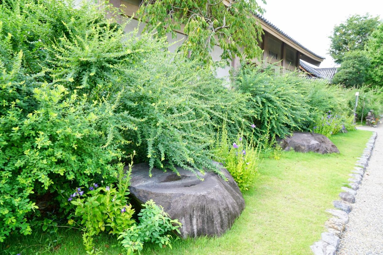 奈良時代の本堂の礎石。平成10年に近隣で発掘されました。