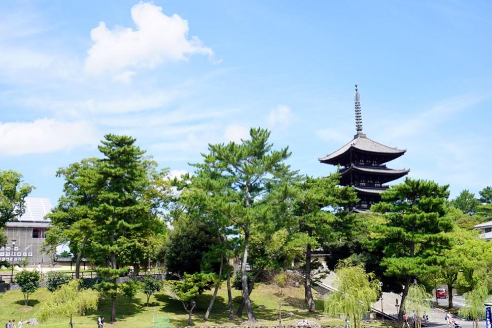 猿沢池から眺める五重塔も絶景です。