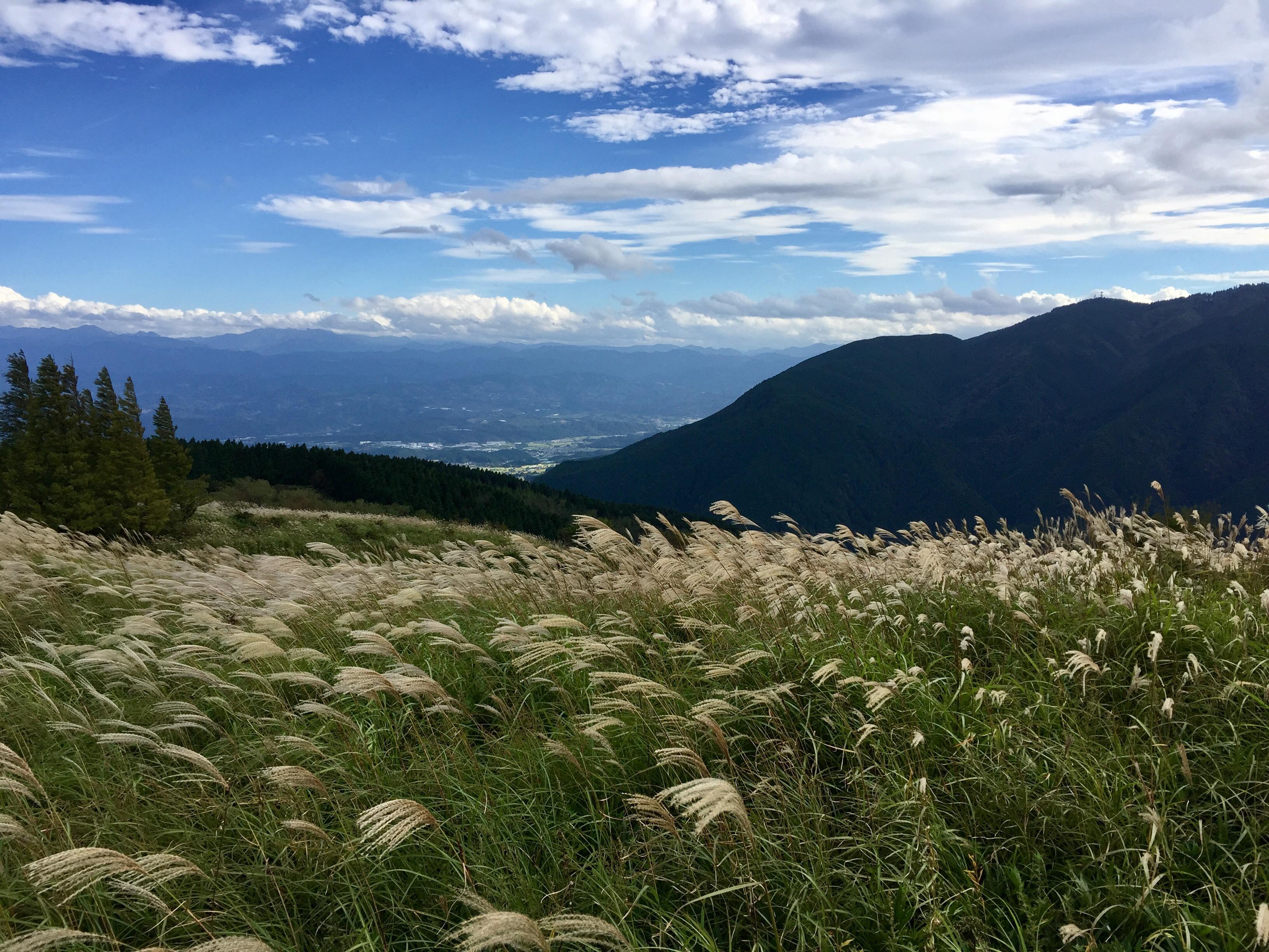 大阪平野と奈良盆地を見渡すことができます。