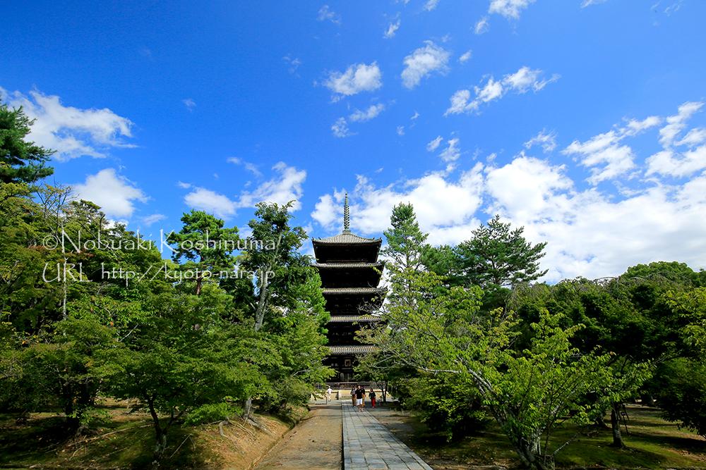 1644年に建立された五重塔。上層から下層の幅にあまり差が見られないのが特徴です。