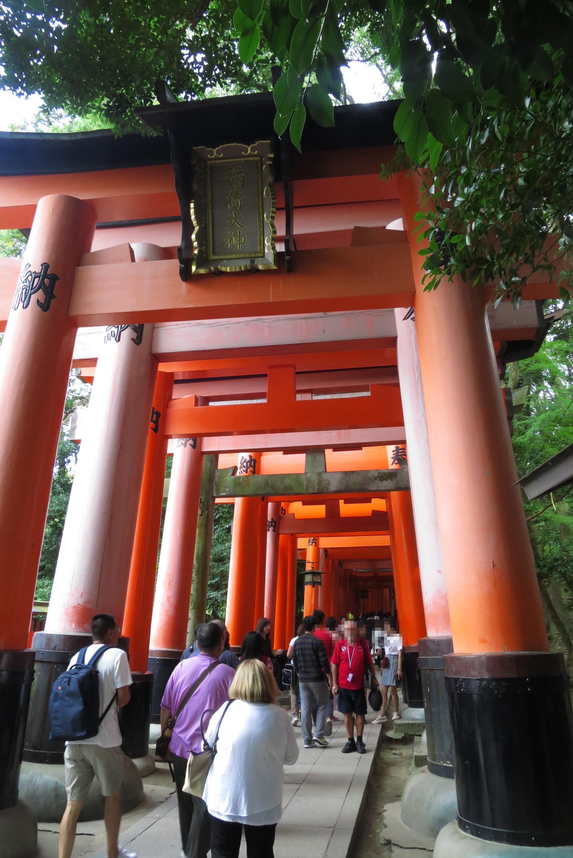有名な千本鳥居。記念撮影をする方も多いのですが、人が多くなかなか撮れないようですね。。。