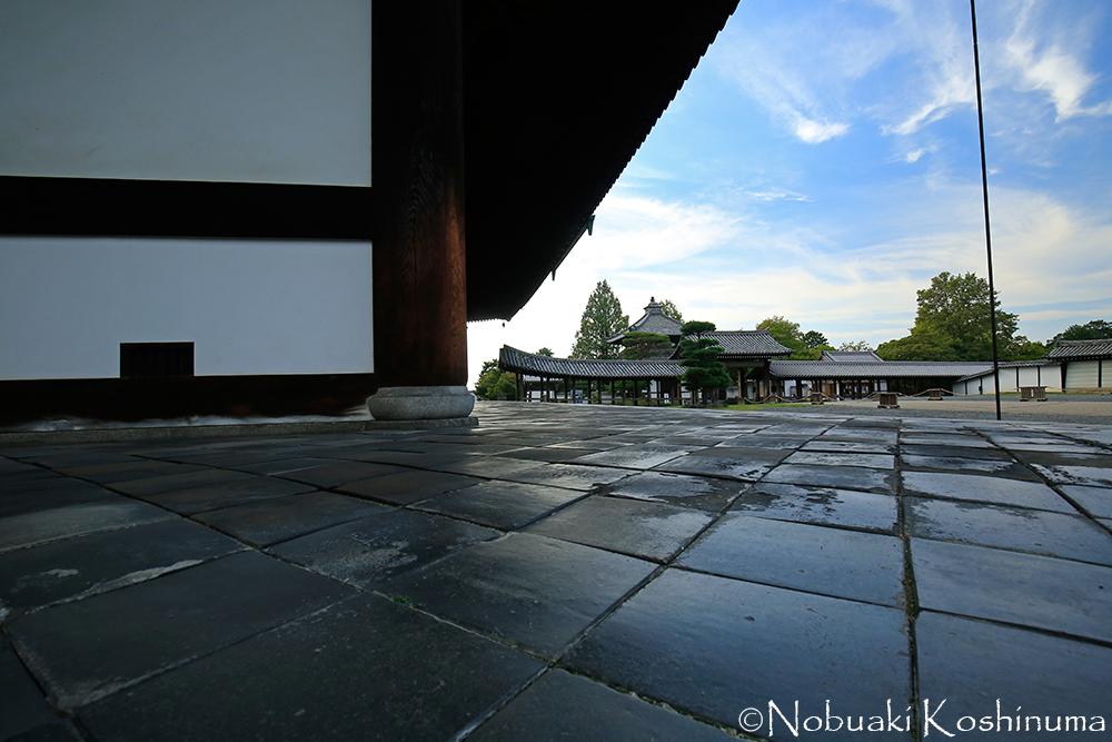東福寺・本堂の床タイルに青空が反射してきれいですね。