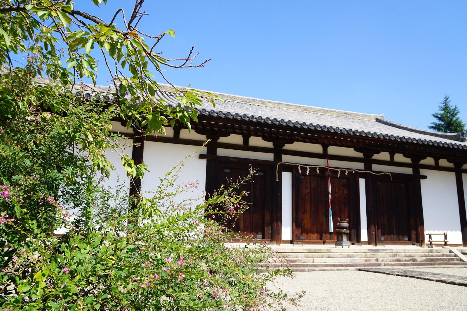 高円山は萩の名所としても有名で、新薬師寺にも萩の花が咲いています。