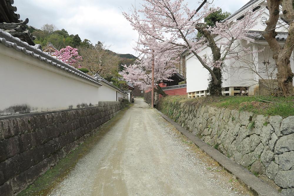 似たような場所で遊んだ記憶がよみがえる雰囲気の道。塀の上も歩いたなぁ・・・。