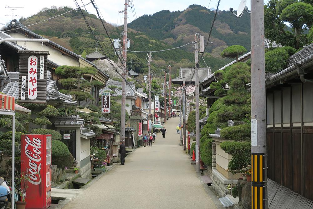 駅から来ると細い静かな道を歩いていくと當麻寺が見えてきます。三重両塔も見えます。