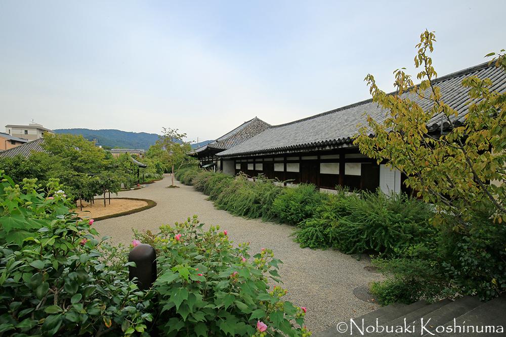 本堂と禅室が一直線に並び、美しい景観になっています。