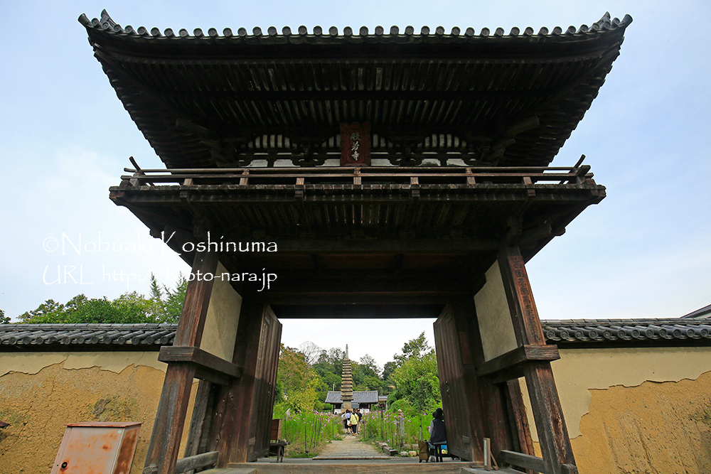 般若寺の楼門(国宝)。