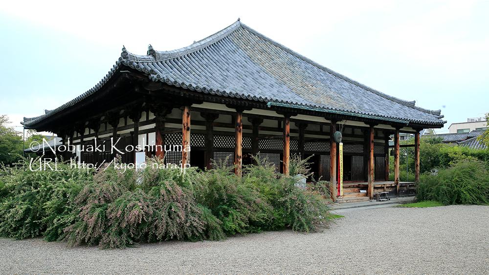 元興寺の極楽坊本堂(国宝)です。萩の花が満開でした。
