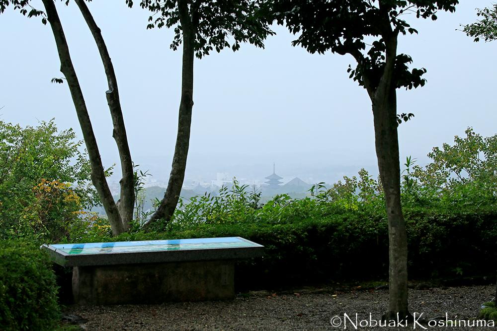 中央付近に見えるのは、興福寺の五重塔。