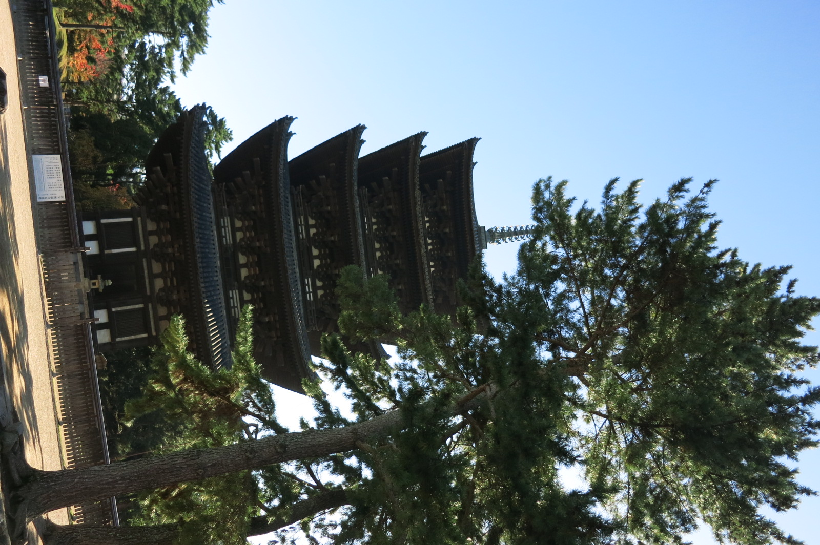 興福寺の五重塔を拝みながら、