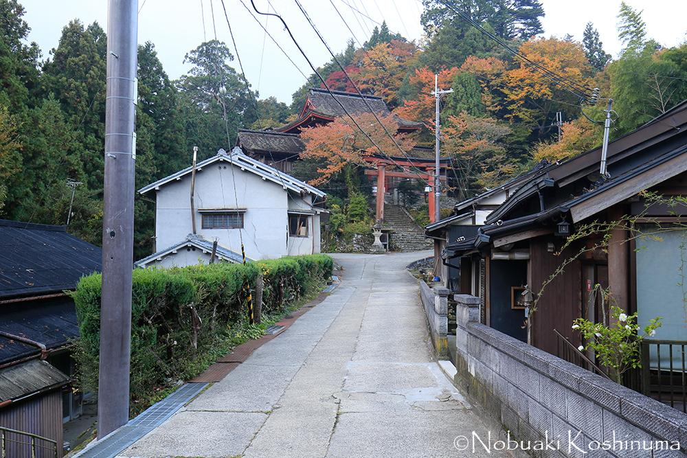 世界遺産の一部として登録された吉野水分神社。周辺がきれいに染まっています。