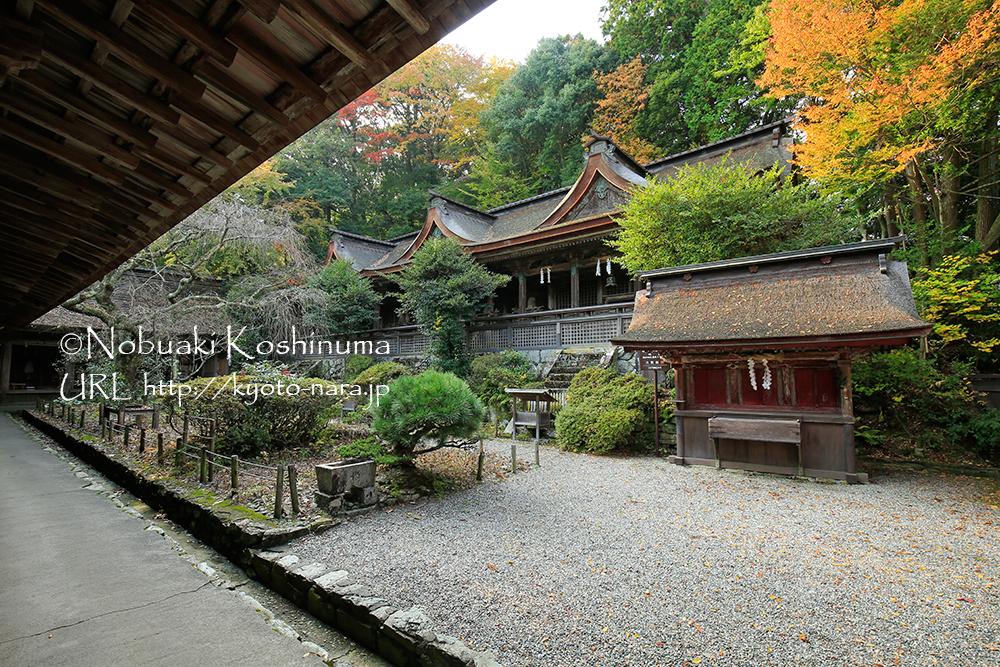 吉野水分神社・本殿は重要文化財。